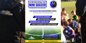 SkillZone Mini Soccer